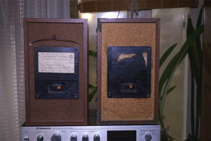СЧ и ВЧ динамики, вид сзади  домашней акустической системы Орбита 50АС-125